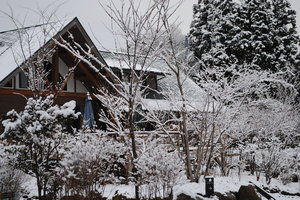 冬2.JPG