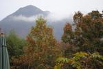 霧の由布岳2.jpg